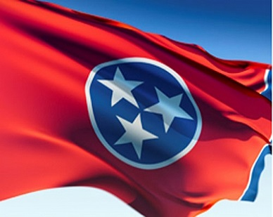 Tennessee – Laws, Rules, and Ethics for Professional Engineers: 3 PDH